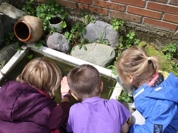 """""""Educación en la naturaleza: Aprender fuera del aula"""""""